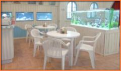 アキが発案した海女カフェが完成する。